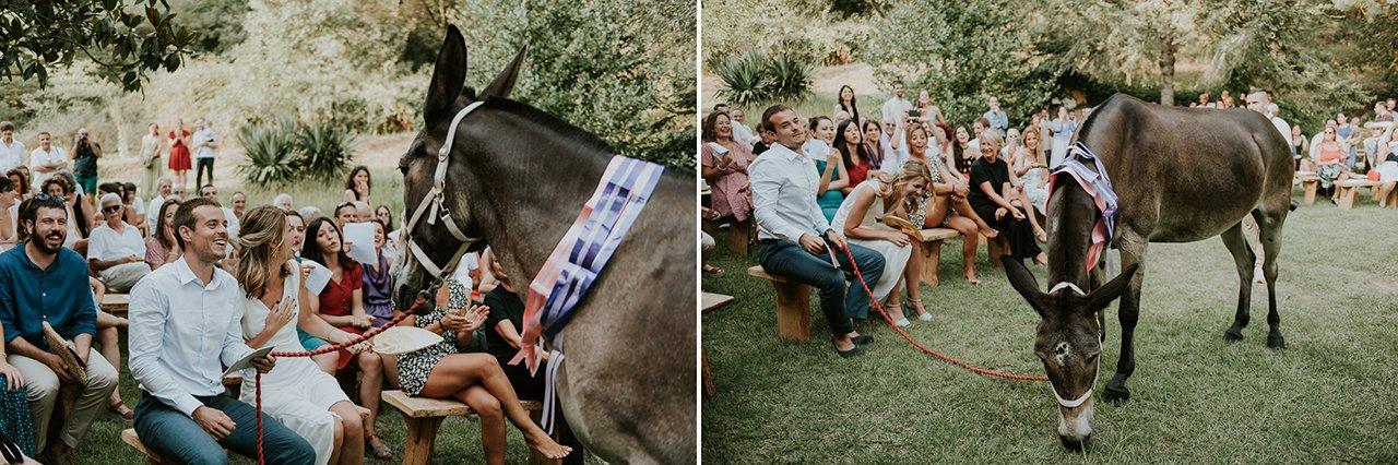 broma para bodas